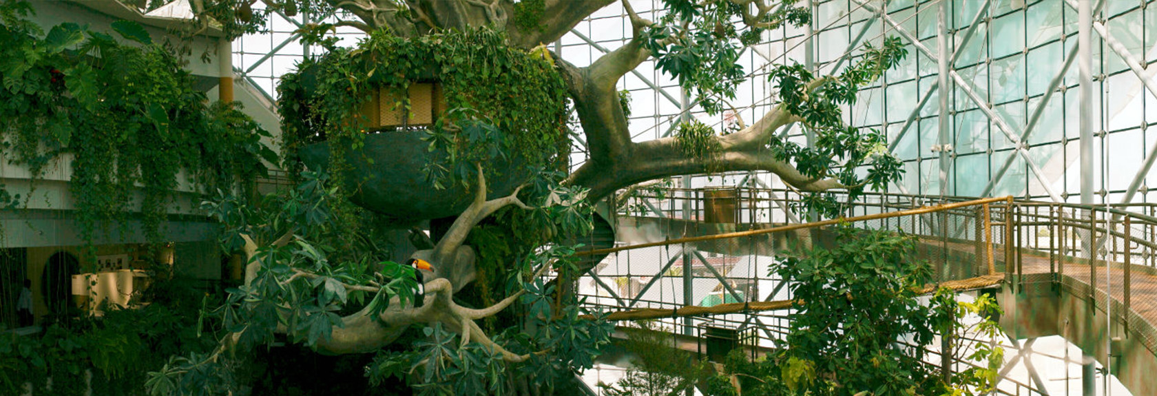 The Green Planet – an indoor tropical rain forest in the desert