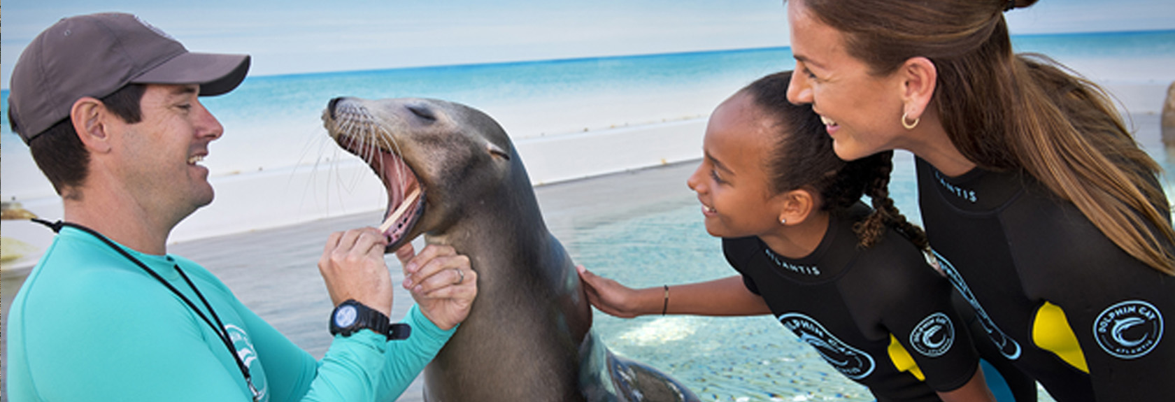 Photo fun with dolphins or sea lions at Atlantis the Palm